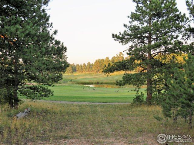2 E Fox Acres Dr Lot 2, Red Feather Lakes, CO 80545 (MLS #859085) :: Kittle Real Estate