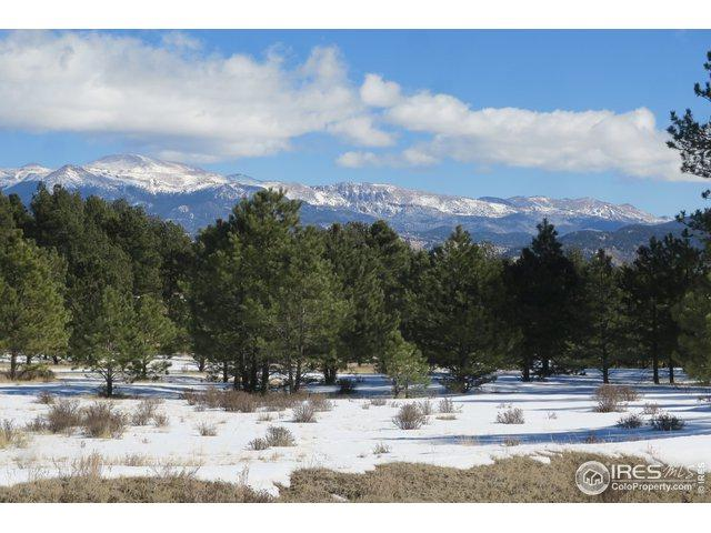 4464 Doe Valley Rd, Guffey, CO 80820 (MLS #862787) :: 8z Real Estate