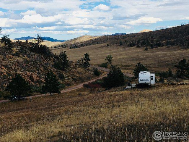 10 Many Thunder Mountain Dr, Livermore, CO 80536 (MLS #864037) :: Kittle Real Estate