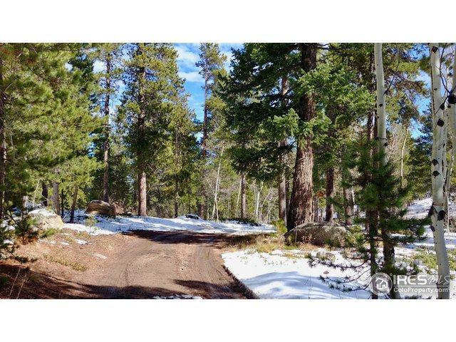 73 Ranch Rd, Ward, CO 80481 (MLS #864622) :: 8z Real Estate