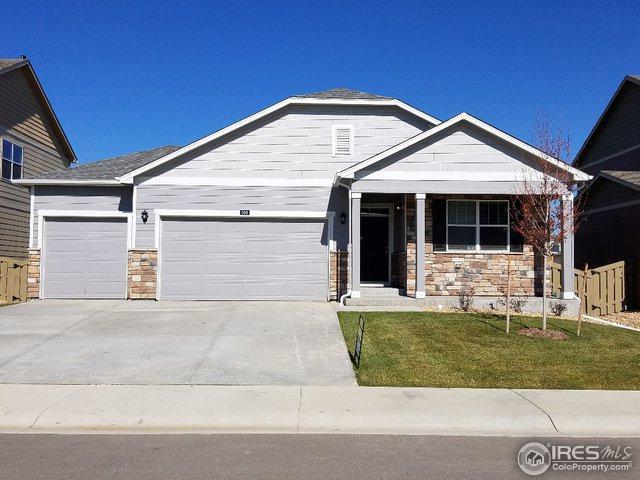 506 Buckrake St, Severance, CO 80550 (MLS #864777) :: 8z Real Estate