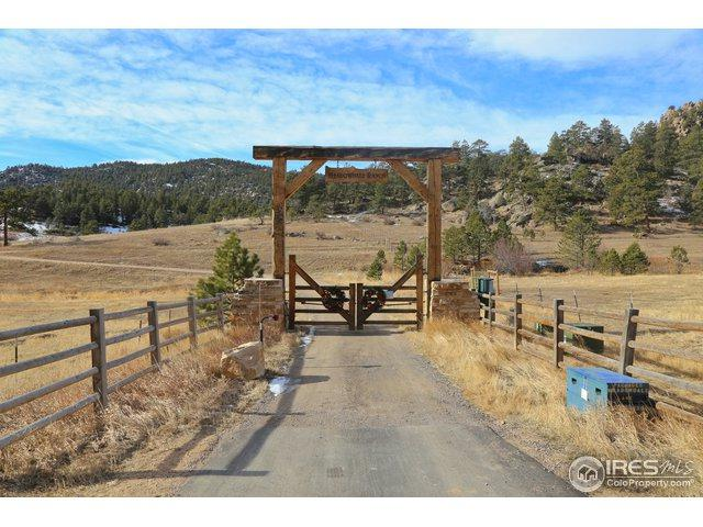 0 Meadowdale Ln, Estes Park, CO 80517 (MLS #868175) :: The Lamperes Team