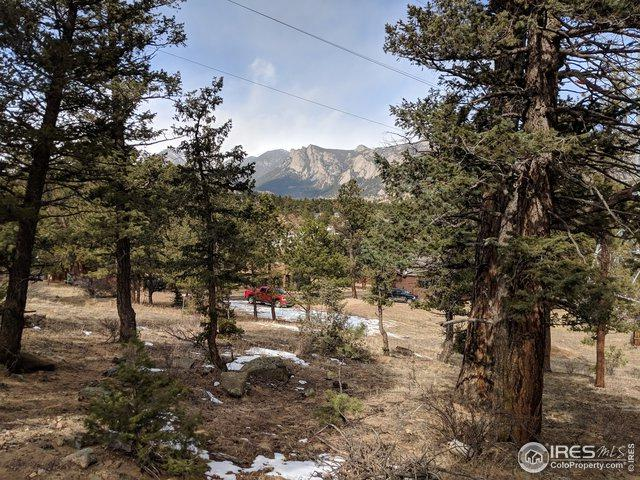 517 Driftwood Ave #2, Estes Park, CO 80517 (MLS #872786) :: J2 Real Estate Group at Remax Alliance