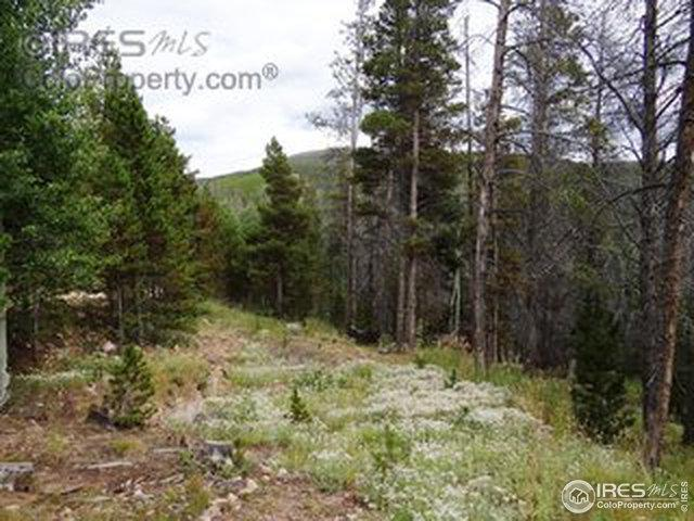 34 Dogrib Ct, Red Feather Lakes, CO 80545 (MLS #873819) :: 8z Real Estate