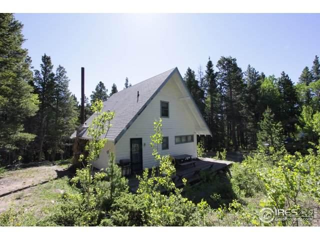 225 Mills Moraine Dr, Estes Park, CO 80517 (MLS #879770) :: 8z Real Estate