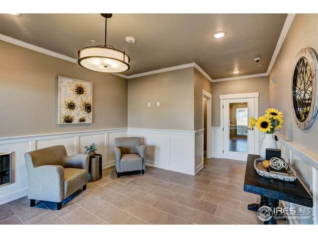 4780 Hahns Peak Dr #206, Loveland, CO 80538 (MLS #882265) :: June's Team