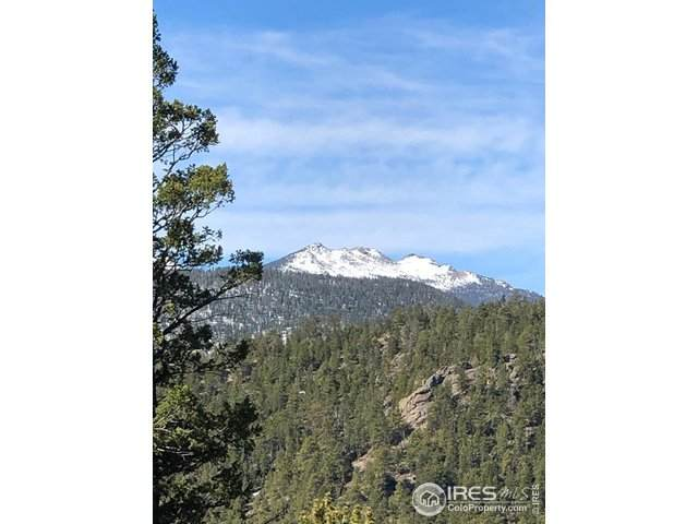 0 Pine Tree Dr, Estes Park, CO 80517 (#883831) :: James Crocker Team