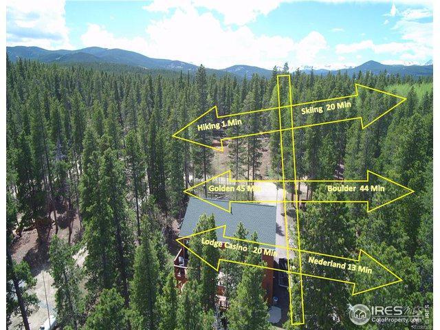 216 Severance Lodge Rd, Black Hawk, CO 80422 (#884382) :: The Peak Properties Group