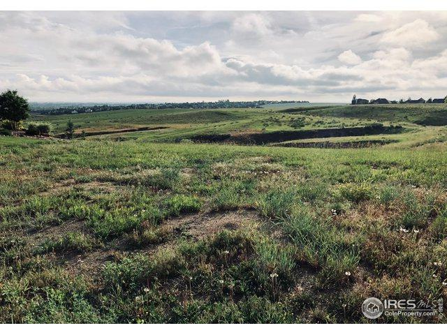 6048 Stone Chase Ct, Windsor, CO 80550 (MLS #884990) :: Colorado Real Estate : The Space Agency