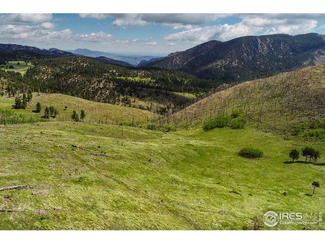 781 County Road 87J, Jamestown, CO 80455 (#885865) :: The Peak Properties Group