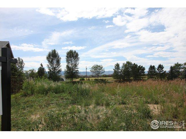 945 Signal Ct, Timnath, CO 80547 (MLS #887366) :: Hub Real Estate