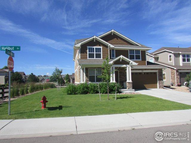 167 Halibut Dr, Windsor, CO 80550 (MLS #888054) :: The Bernardi Group