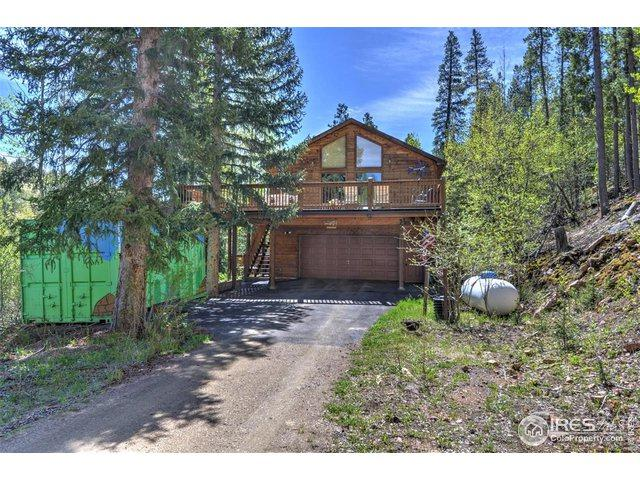 7505 County Road 43, Bailey, CO 80421 (#889539) :: HomePopper