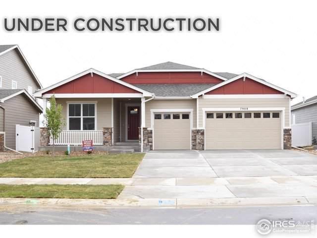 5557 Maidenhead Dr, Windsor, CO 80550 (MLS #893874) :: 8z Real Estate