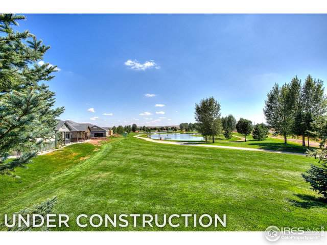 4145 Crittenton Ln #1, Wellington, CO 80549 (MLS #894008) :: Hub Real Estate