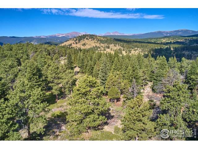 245 Gordon Creek Rd, Boulder, CO 80302 (MLS #894174) :: RE/MAX Alliance