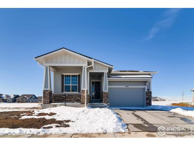 5933 Sapling St, Fort Collins, CO 80528 (MLS #895373) :: Bliss Realty Group
