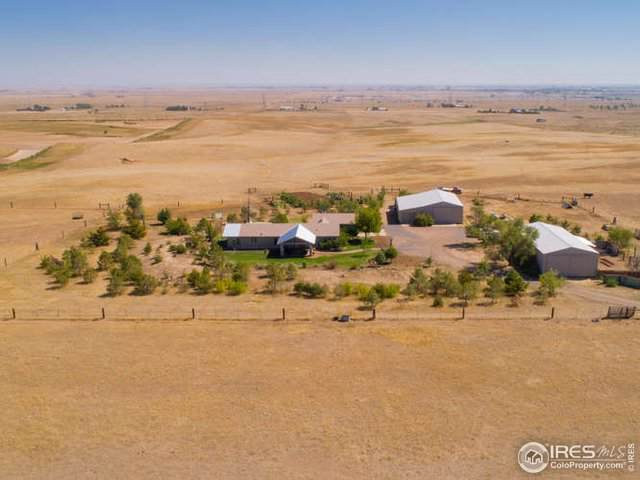 44850 County Road 25, Pierce, CO 80650 (MLS #896075) :: 8z Real Estate