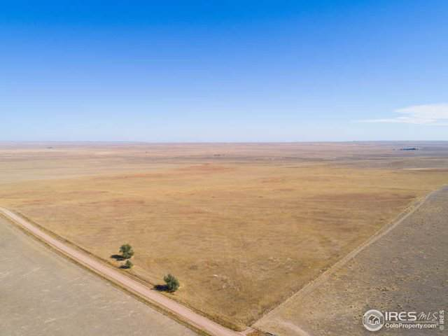 55742 County Road 37, Nunn, CO 80648 (MLS #896214) :: J2 Real Estate Group at Remax Alliance