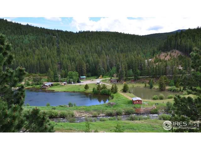 244 Assay Office Rd, Rollinsville, CO 80474 (MLS #899736) :: Tracy's Team