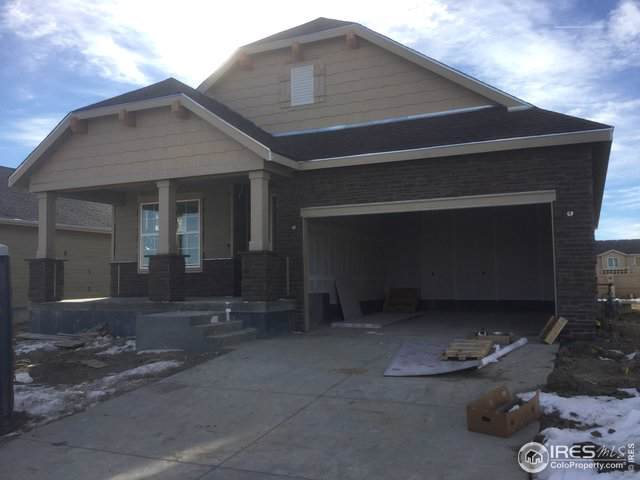 508 176th Ave, Broomfield, CO 80023 (#899832) :: HergGroup Denver