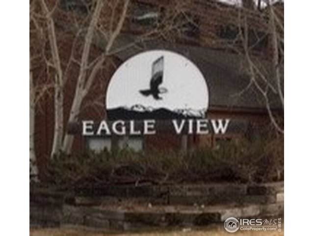 1050 S Saint Vrain Ave #1, Estes Park, CO 80517 (MLS #902069) :: Downtown Real Estate Partners