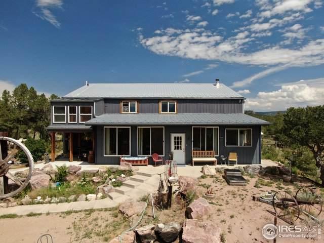 729 Navajo Dr, Canon City, CO 81212 (MLS #904126) :: 8z Real Estate