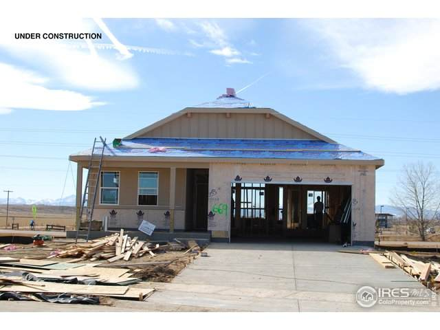669 White Tail Ave, Greeley, CO 80634 (#904324) :: My Home Team