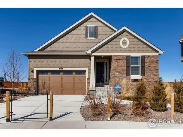 2478 Ravenswood Ct, Longmont, CO 80504 (MLS #905623) :: 8z Real Estate