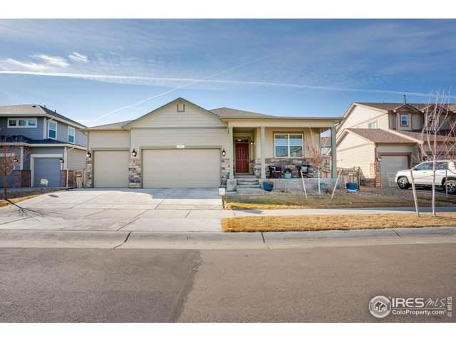 814 Gamble Oak St, Brighton, CO 80601 (MLS #905778) :: 8z Real Estate