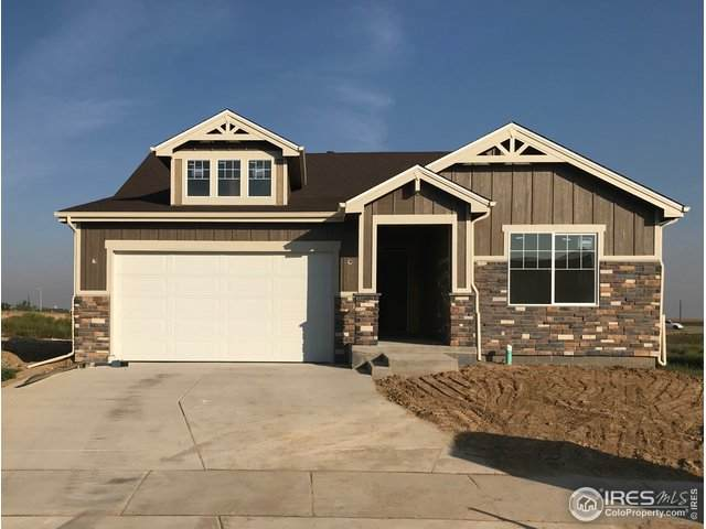 10345 11th St, Greeley, CO 80634 (MLS #905799) :: 8z Real Estate