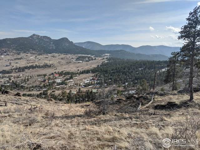155 Wild Turkey Pl, Drake, CO 80515 (MLS #907065) :: 8z Real Estate