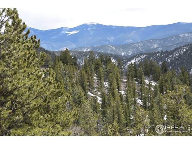 Hamlin Gulch Rd, Idaho Springs, CO 80452 (MLS #908026) :: 8z Real Estate