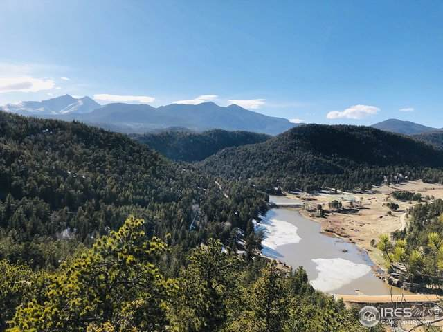 125 Balsam Dr, Lyons, CO 80540 (MLS #908304) :: Jenn Porter Group