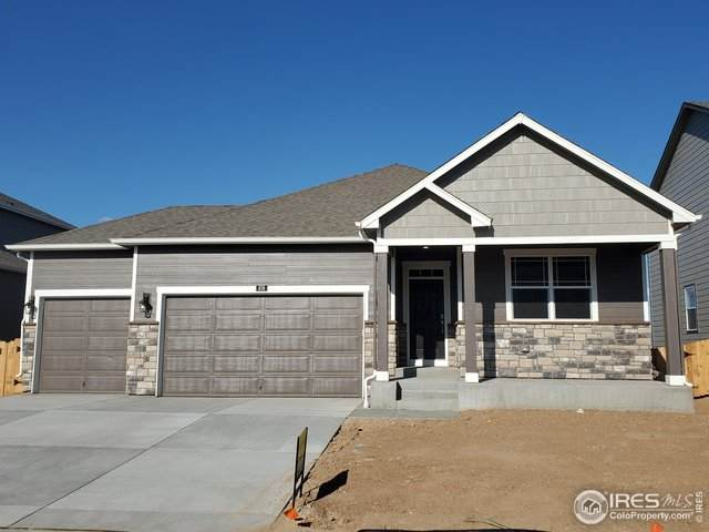 876 Camberly Dr, Windsor, CO 80550 (#908386) :: The Brokerage Group