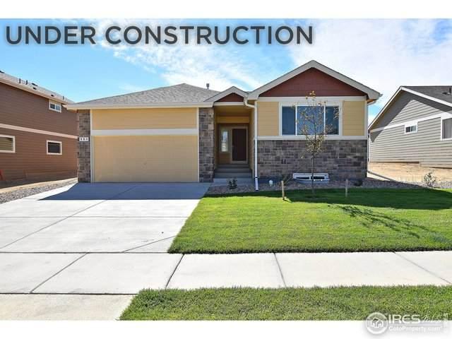 803 Sambar Dr, Severance, CO 80550 (MLS #913939) :: Hub Real Estate