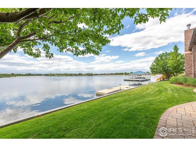 525 Whitney Bay, Windsor, CO 80550 (MLS #914348) :: Downtown Real Estate Partners