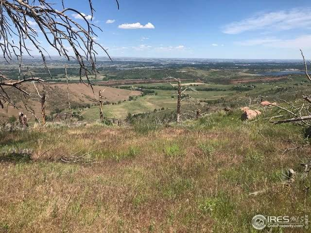 0 Whale Rock Rd, Bellvue, CO 80512 (#914835) :: Kimberly Austin Properties