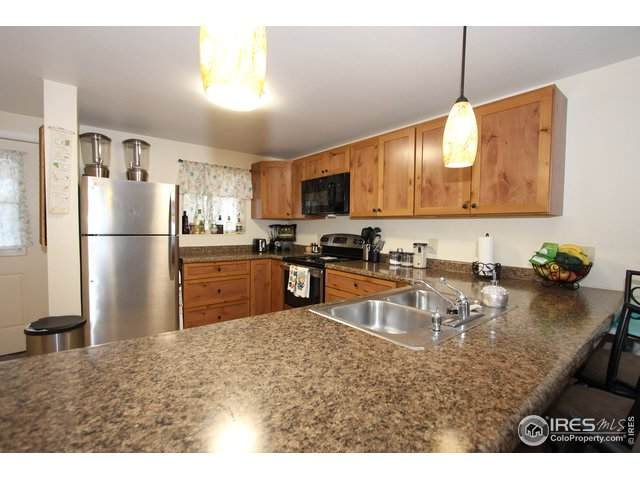1730 Raven Ave #11, Estes Park, CO 80517 (#915375) :: Compass Colorado Realty