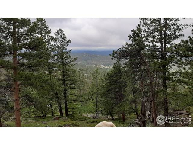 1171 Jicarilla Trl, Red Feather Lakes, CO 80545 (MLS #915681) :: The Wentworth Company
