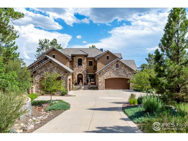 651 Ruby Trust Dr, Castle Rock, CO 80108 (#915733) :: Kimberly Austin Properties