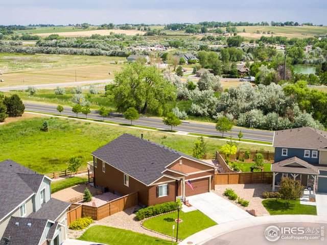 117 Vela Ct, Loveland, CO 80537 (MLS #915976) :: 8z Real Estate