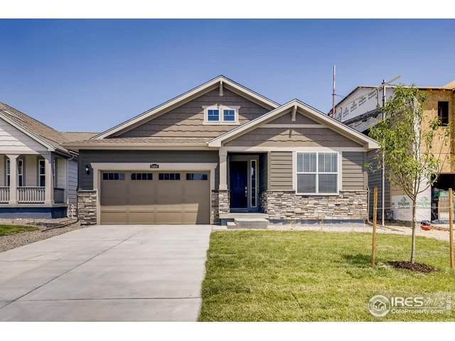 2464 Ravenswood Ct, Longmont, CO 80504 (MLS #917017) :: Tracy's Team