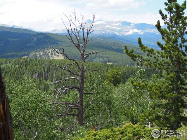 0 Geneva's Way, Black Hawk, CO 80422 (MLS #918963) :: 8z Real Estate