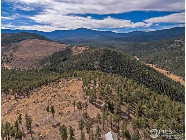 7 Holmes Gulch (Bailey,Co 80421), Pine, CO 80470 (MLS #919226) :: J2 Real Estate Group at Remax Alliance