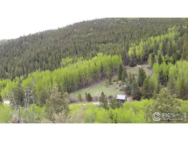 0 Miners Candle Rd, Idaho Springs, CO 80452 (#919348) :: Kimberly Austin Properties