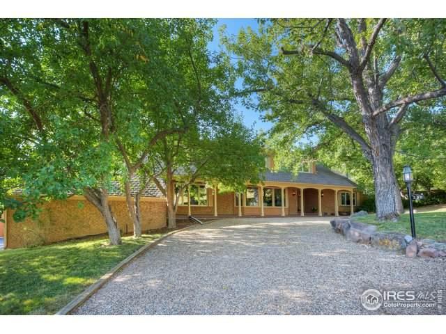 290 Cactus Ct, Boulder, CO 80304 (MLS #921829) :: 8z Real Estate