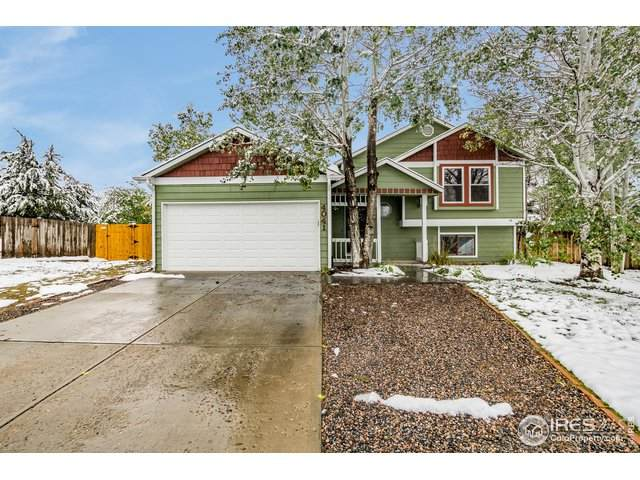 4041 Platte Dr, Fort Collins, CO 80526 (MLS #923588) :: Kittle Real Estate