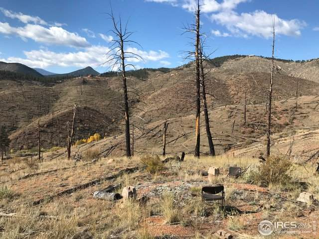 0 Cochise Trl, Pine, CO 80470 (MLS #925371) :: Tracy's Team