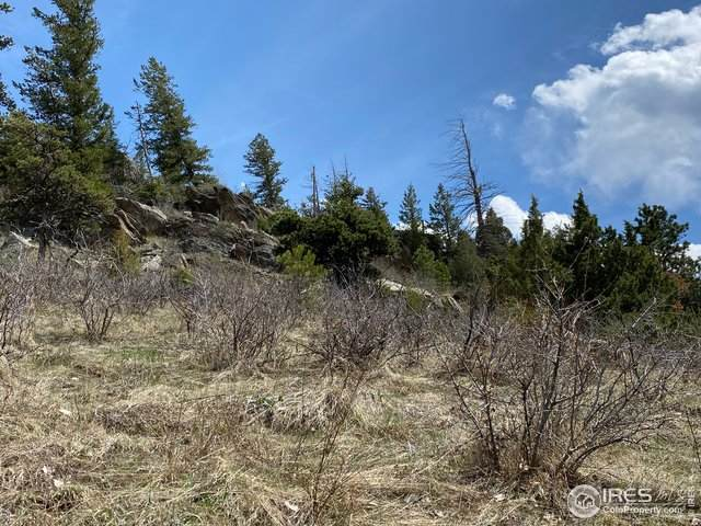 0 Palisade Mountain Dr, Drake, CO 80515 (MLS #925399) :: 8z Real Estate